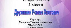 Дружинин Роман Олегович(3)